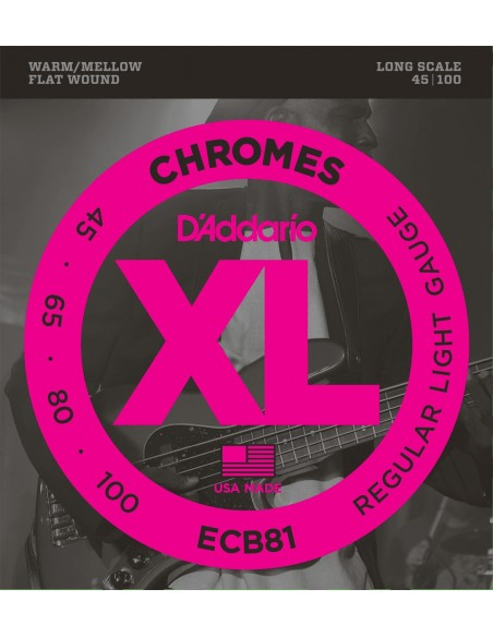 D'ADDARIO ECB81 FILET PLAT STAINLESS STEEL 45-100